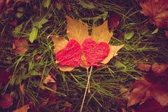 le long du fond la couleur a circulé des coeurs rament sans joint le valentine Image stock