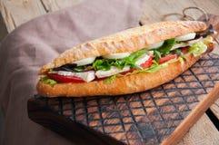 Le long sandwich à baguette avec des tomates de laitue eggs l'oignon et le Mayo Images stock