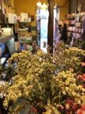 Le lookin de pot de fleur à la porte photo libre de droits