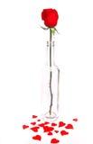le lool de pétales roses aiment le coeur Image stock