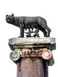 Le loup de Capitoline : Statue du -loup allaitant Romulus et Photo stock