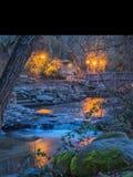 Le luci hanno riflesso sulla corrente attraverso il parco Lithia in Ashland, Oregon Fotografia Stock