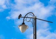 Le lutin se repose sur la lampe contre le ciel bleu image stock