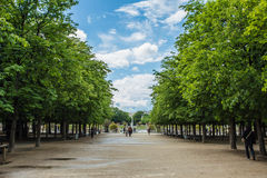 Le Luxembourg font du jardinage (Jardin du Luxembourg) à Paris Photos stock