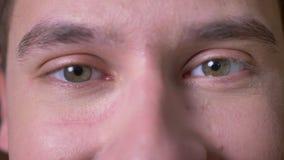 Le mâle caucasien focalisé par plan rapproché enlève ses verres et regarde directement avec les yeux calmes verts clips vidéos