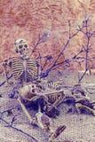 Le mâle et la femelle toujours d'os de corps humain de concept de la vie s'asseyent sur b sec Images stock