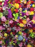 Le mélange coloré fleurit le mur de décoration Photo stock