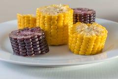 Le maïs noir et jaune s'est mélangé d'un plat Image libre de droits