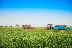 Le macchine agricole in una soia sistemano in un giorno di estate soleggiato Fotografia Stock