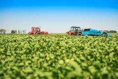 Le macchine agricole in una soia sistemano in un giorno di estate soleggiato Immagine Stock Libera da Diritti