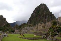Le Machu célèbre Picchu Images libres de droits