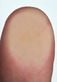 Le macro du pouce raye le doigt Photo libre de droits