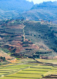 Le Madagascar Photographie stock libre de droits