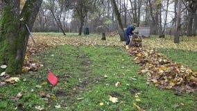 Le main-d'œuvre féminine rassemblent les feuilles sèches dans le sac matériel à sac et portent pour composter 4K clips vidéos