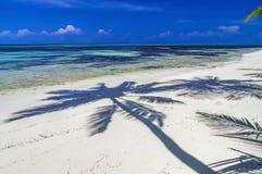 Le Maldive - laguna tropicale soleggiata Fotografia Stock Libera da Diritti
