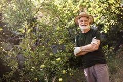 Le mananseende i trädgård med hans armar korsade royaltyfri fotografi