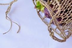 Le mangoustan dans le panier traditionnel sont capturés a isolé dans l'angle supérieur Image stock