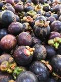 Le mangoustan, fruit asiatique, est frais photographie stock libre de droits