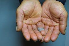 Le mani approssimative del ` s dell'uomo, le mani del ` s dell'agricoltore, nei precedenti grigi Immagine Stock