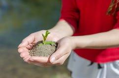 Le mani aumentano il lago blu e verde Immagini Stock