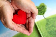 Le mani che tengono il cuore rosso, sanità, donano e insuranc della famiglia fotografia stock