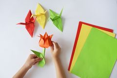 Le mani del ` s dei bambini fanno gli origami da carta colorata su fondo bianco Lezione degli origami Immagini Stock
