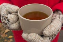 Le mani del ` s delle donne in guanti caldi tengono una tazza di tè Immagini Stock