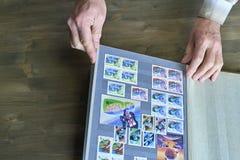 Le mani dell'uomo senior tengono l'album di bollo con la raccolta dei francobolli, fondo di legno Fotografia Stock Libera da Diritti