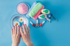 Le mani della bella donna con il manicure perfetto in ciotola di acqua Immagini Stock Libere da Diritti