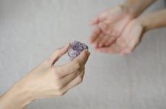 Le mani della donna che danno un cristallo ametista ad un altro Fotografia Stock