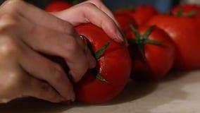 Le mani della donna che tagliano pomodoro con un coltello, ortaggi freschi, processo di cottura archivi video