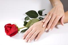 Le mani della donna con colore rosso sono aumentato Fotografie Stock