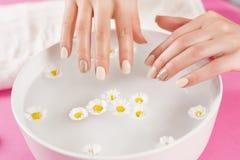 Le mani della donna con le unghie del manicure e la ciotola con acqua e la margherita fioriscono fotografia stock