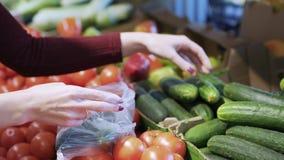 Le mani della donna del primo piano hanno messo i cetrioli nel sacchetto di plastica dal contatore con le verdure archivi video