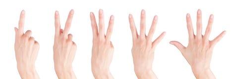 Le mani della donna hanno fissato la mostra dei numeri da uno a cinque Fotografie Stock Libere da Diritti
