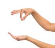 Le mani della donna tengono il biglietto da visita virtuale del segno ed aprono la palma Immagini Stock