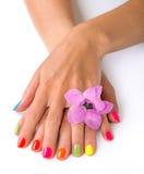 Le mani della giovane donna con il manicure luminoso Fotografie Stock