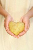 Le mani della patata della tenuta della giovane donna nel cuore modellano Fotografia Stock