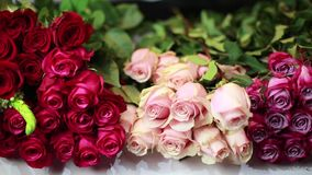 Le mani delle donne sono prendono le rose rosa alla stanza frontale di negozio stock footage