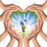 le mani di figura del cuore del ¹ del à coprono la natura e la lampadina Fotografie Stock Libere da Diritti