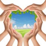 Le mani fanno il cuore modellare la natura del coperchio Fotografia Stock Libera da Diritti