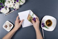 Le mani femminili hanno messo un fiore nella busta bianca con la lettera Crisantemi freschi, matite, tazza di tè e caramelle su b Immagini Stock