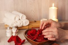 Le mani femminili toccano i petali rosa, preparazione per la procedura della stazione termale per la pelle delle mani Immagini Stock Libere da Diritti