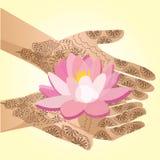 Le mani hanno decorato con la donna indiana del hennè che tiene un fiore di loto Fotografie Stock