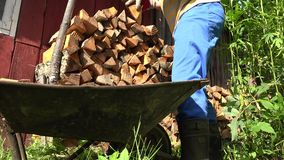 Le mani maschii del giardiniere con i guanti scaricano la legna da ardere di legno tagliata dal carretto 4K video d archivio