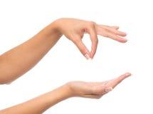 Le mani tengono il biglietto da visita virtuale del segno ed aprono la palma Immagini Stock