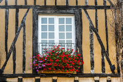 Le Mans, окно с цветками стоковое фото rf