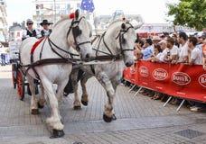 LE MANS, FRANCIA - 13 DE JUNIO DE 2014: Dos caballos blancos con los jinetes en un desfile de competir con de los pilotos imagen de archivo