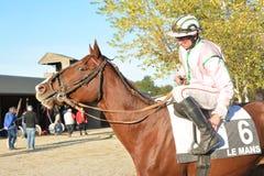 LE MANS FRANKRIKE - OKTOBER 30, 2016: ryttare och häst Royaltyfria Bilder
