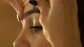 Le maquillage est également les brucelles plutôt agiles de sourcil banque de vidéos